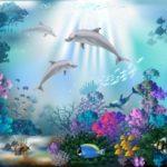 Brief aan een jonge dolfijn